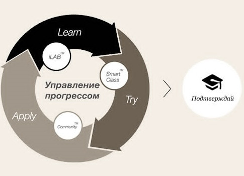 Методика обучения Efekta